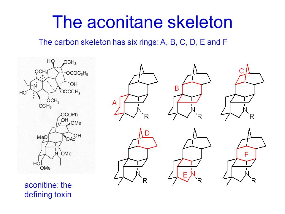The synthetic challenge: Bridged rings The hexacyclic carbon skeleton of these molecules has: –2 bridged-ring carbocyclic systems based on 5- and 6-membered rings –2 bridged-ring heterocyclic systems based on 5- and 6-membered rings