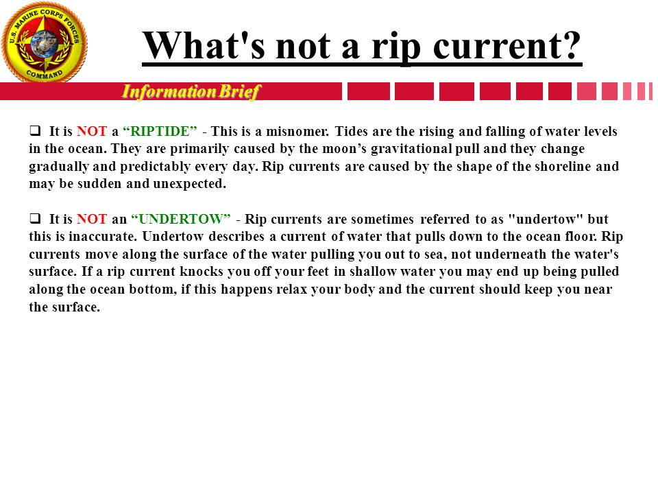 "Information Brief  It is NOT a ""RIPTIDE"" - This is a misnomer. Tides are the rising and falling of water levels in the ocean. They are primarily caus"