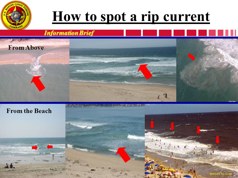 Information Brief From Above From the Beach How to spot a rip current