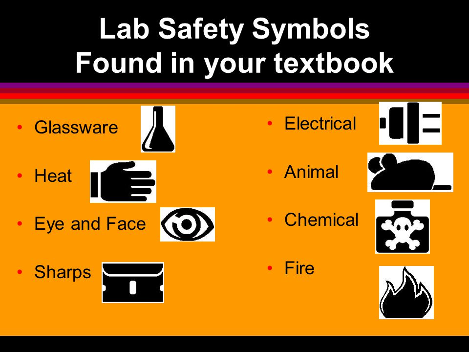 Animal Safety Occasionally you will encounter live animals in the science lab or outdoors while doing field work. Please be careful to keep from being
