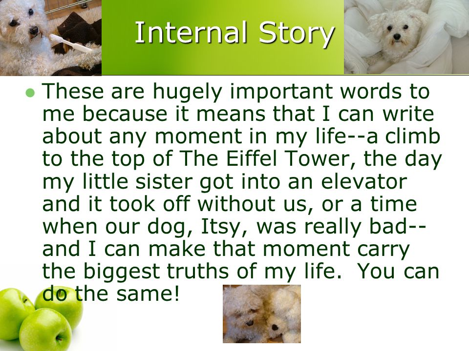 Internal Story These are hugely important words to me because it means that I can write about any moment in my life--a climb to the top of The Eiffel Tower, the day my little sister got into an elevator and it took off without us, or a time when our dog, Itsy, was really bad-- and I can make that moment carry the biggest truths of my life.
