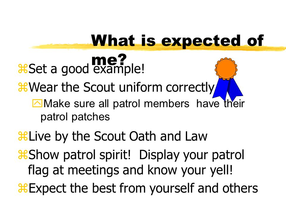 What is expected of me? zSet a good example! zWear the Scout uniform correctly yMake sure all patrol members have their patrol patches zLive by the Sc