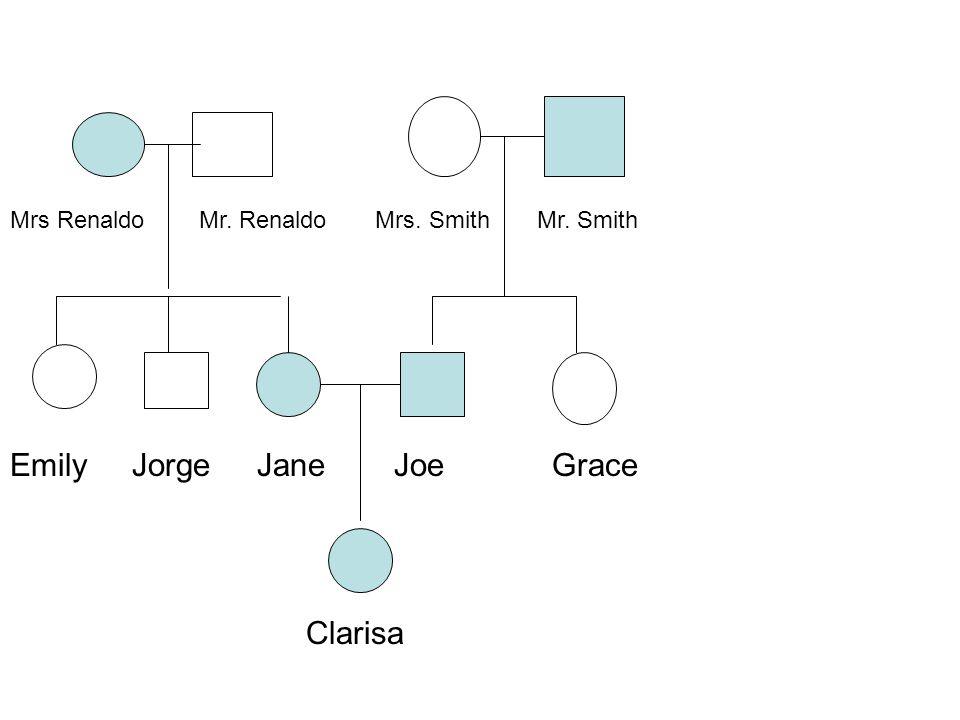 Clarisa Emily Jorge JaneJoe Grace Mrs Renaldo Mr. Renaldo Mrs. Smith Mr. Smith