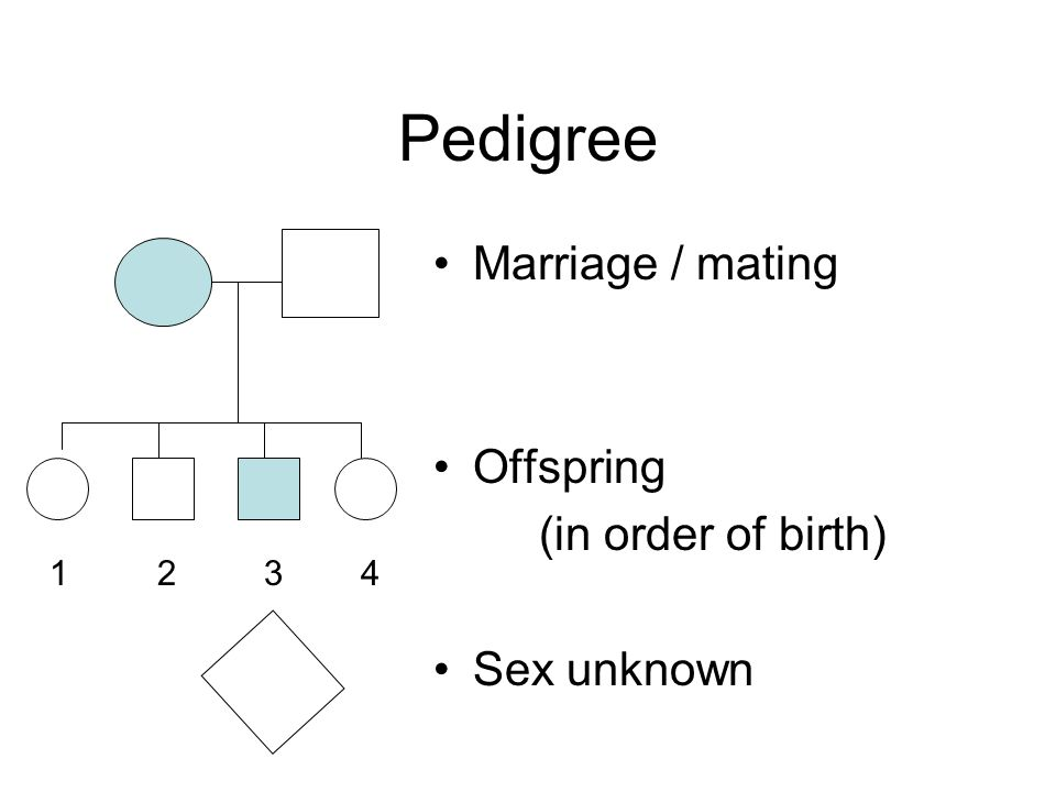 Pedigree Marriage / mating Offspring (in order of birth) Sex unknown 1 2 3 4
