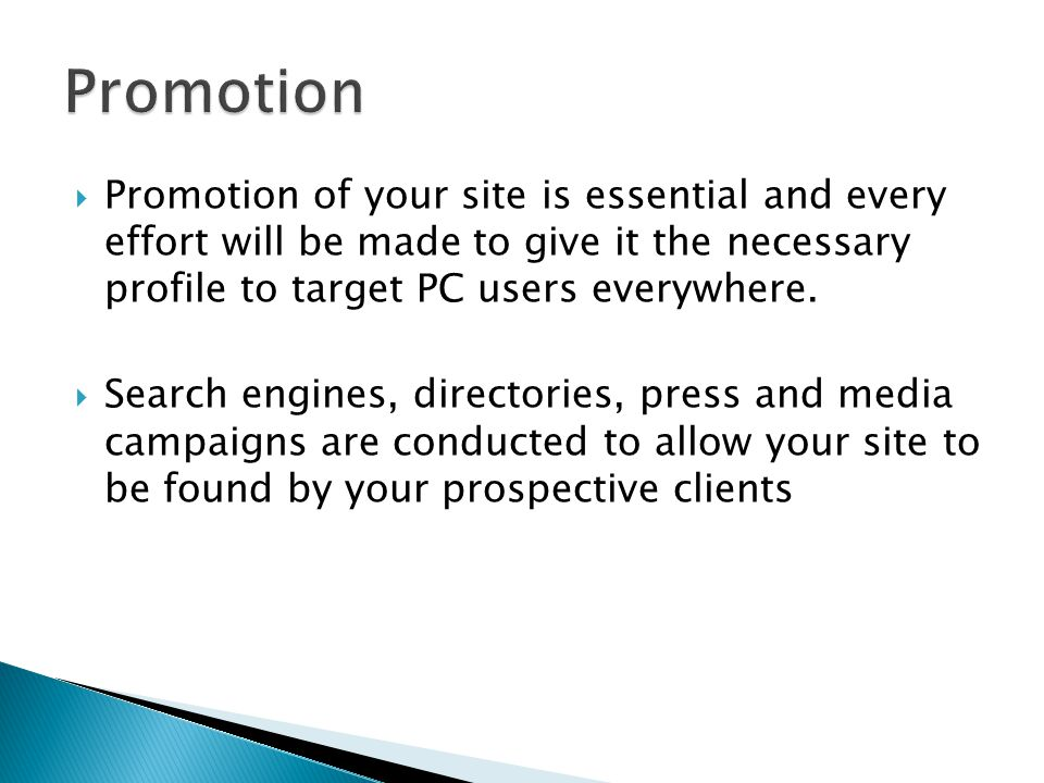  Promotion of your site is essential and every effort will be made to give it the necessary profile to target PC users everywhere.