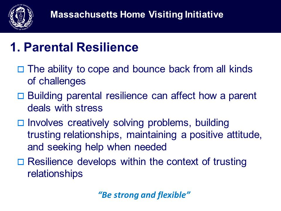 1. Parental Resilience  The ability to cope and bounce back from all kinds of challenges  Building parental resilience can affect how a parent deals