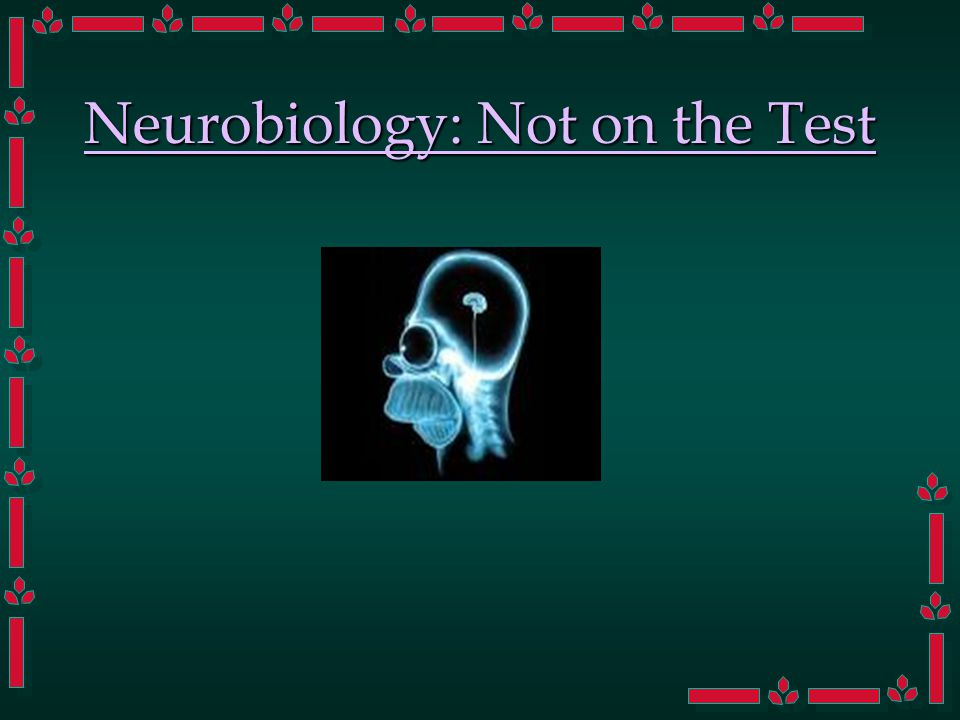 Neurobiology: Not on the Test