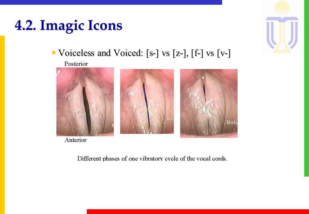 4.2. Imagic Icons wVoiceless and Voiced: [s-] vs [z-], [f-] vs [v-]