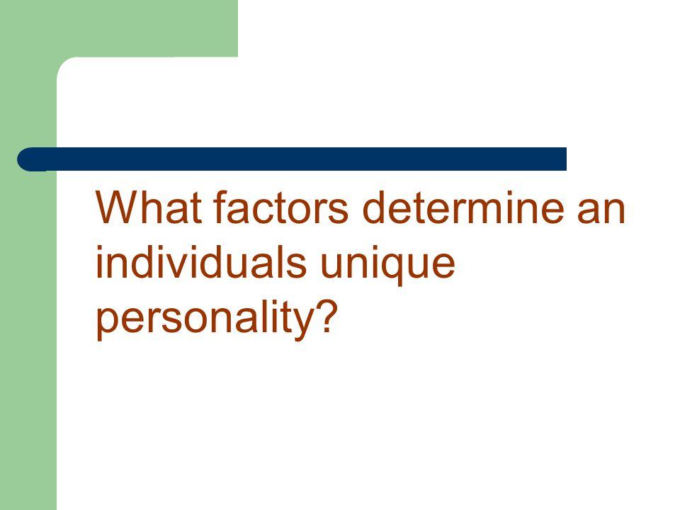 What factors determine an individuals unique personality