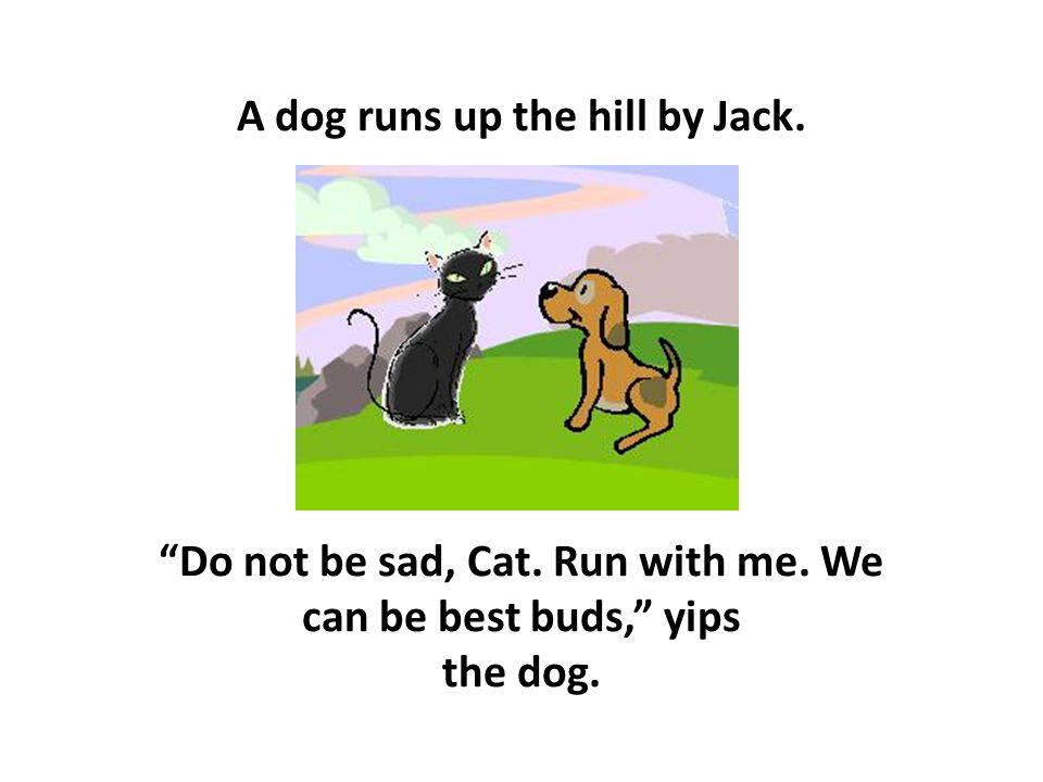 "A dog runs up the hill by Jack. ""Do not be sad, Cat. Run with me. We can be best buds,"" yips the dog."