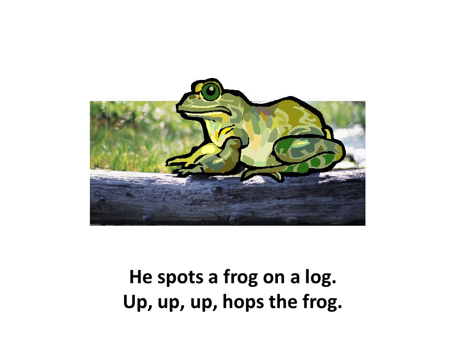 He spots a frog on a log. Up, up, up, hops the frog.