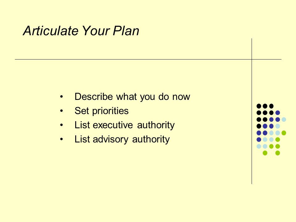 Articulate Your Plan Describe what you do now Set priorities List executive authority List advisory authority
