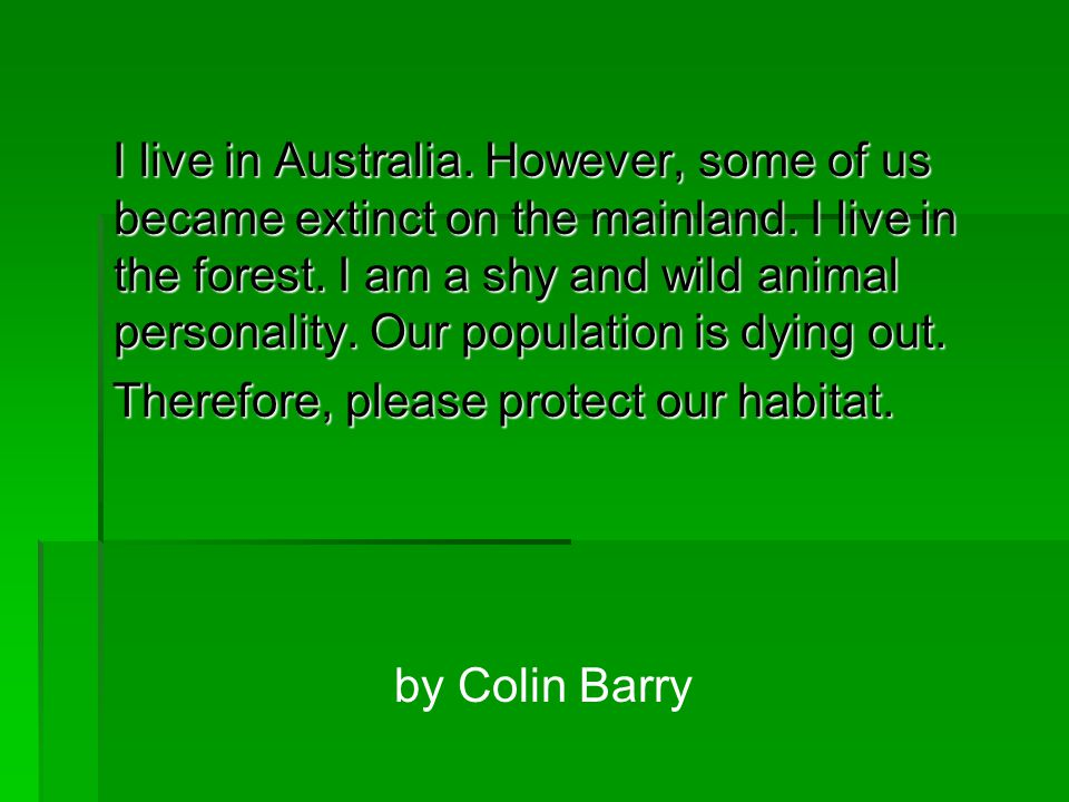 I live in Australia. However, some of us became extinct on the mainland. I live in the forest. I am a shy and wild animal personality. Our population