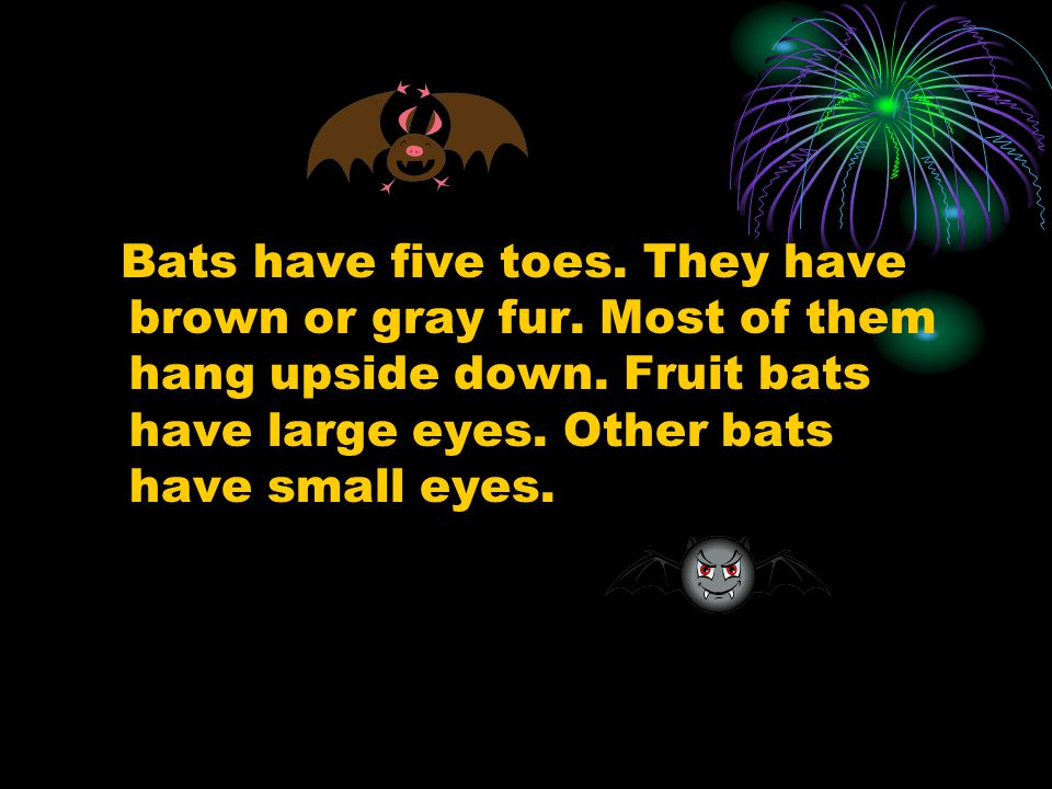Bats have five toes. They have brown or gray fur.