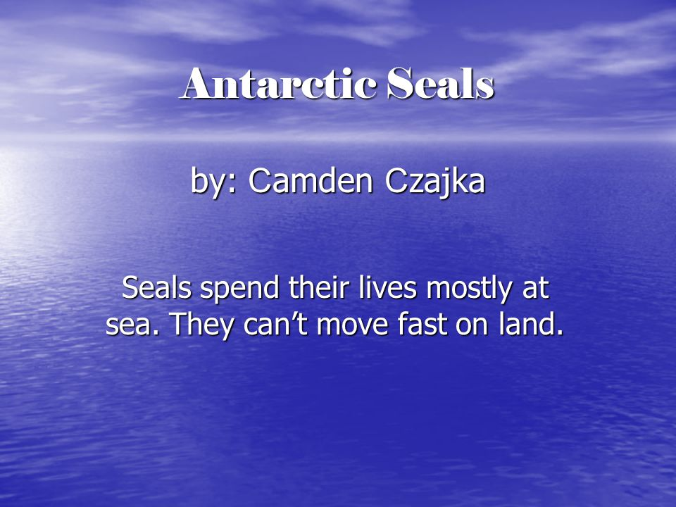 Antarctic Seals by: C amden C zajka Seals spend their lives mostly at sea.