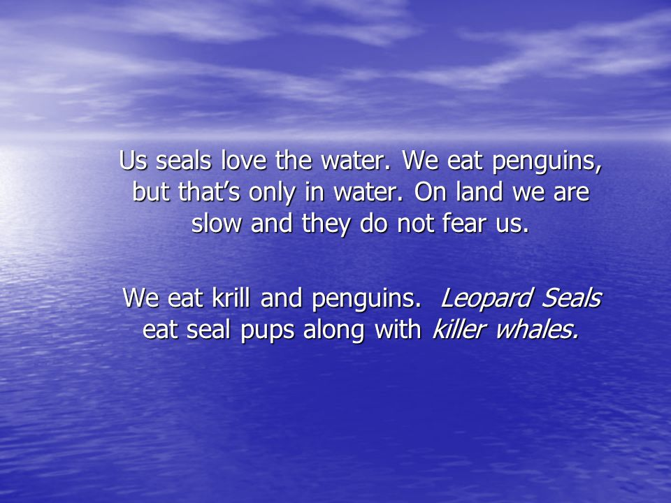 Us seals love the water. We eat penguins, but that's only in water. On land we are slow and they do not fear us. We eat krill and penguins. Leopard Se