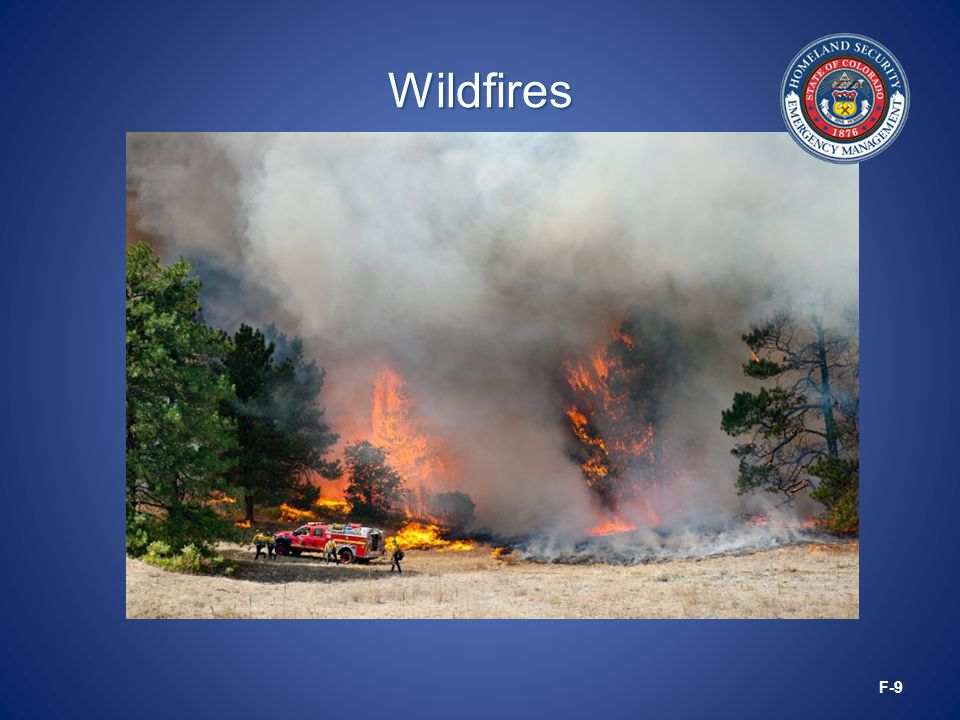 Wildfires F-9