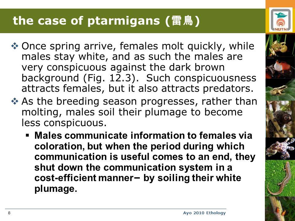 Ayo 2010 Ethology49 Dishonest alarm calls in swallows.