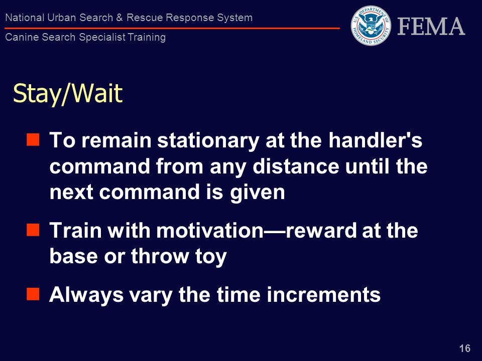 16 National Urban Search & Rescue Response System Canine Search Specialist Training Stay/Wait To remain stationary at the handler s command from any distance until the next command is given Train with motivation—reward at the base or throw toy Always vary the time increments