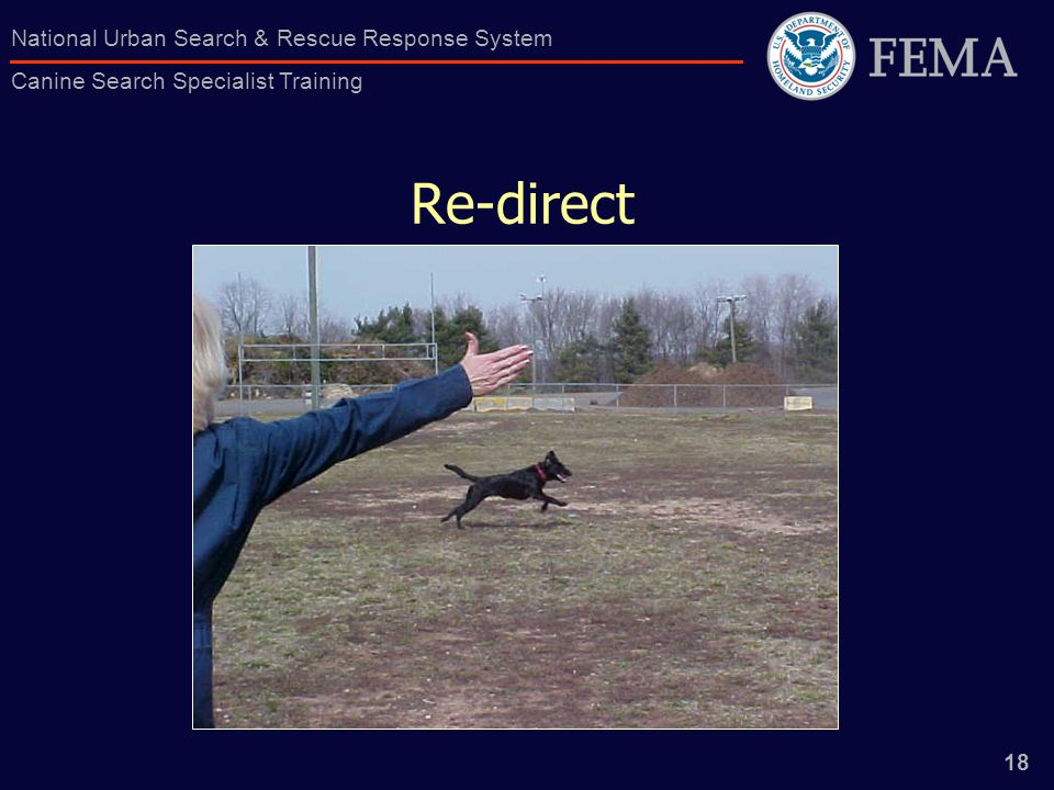 18 National Urban Search & Rescue Response System Canine Search Specialist Training Re-direct