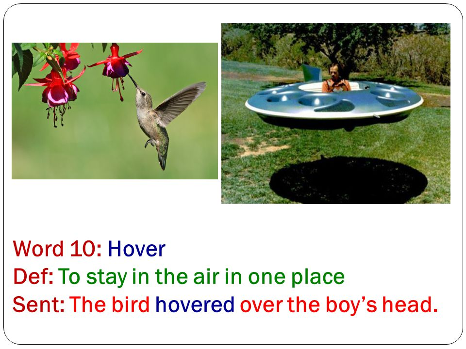 Word 10: Hover Def: To stay in the air in one place Sent: The bird hovered over the boy's head.