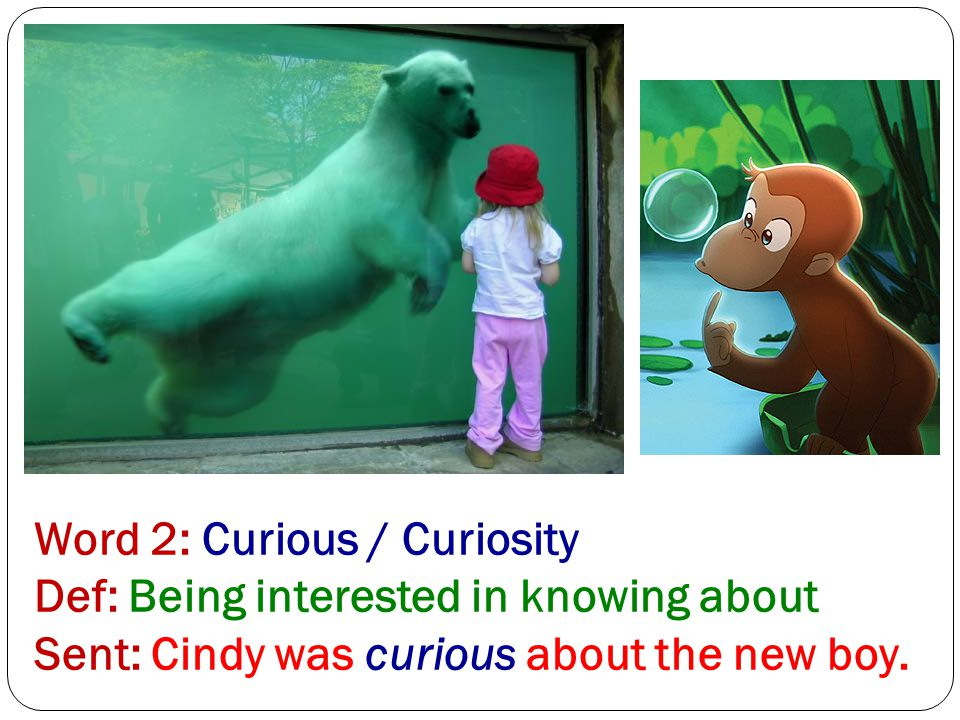 Word 2: Curious / Curiosity Def: Being interested in knowing about Sent: Cindy was curious about the new boy.