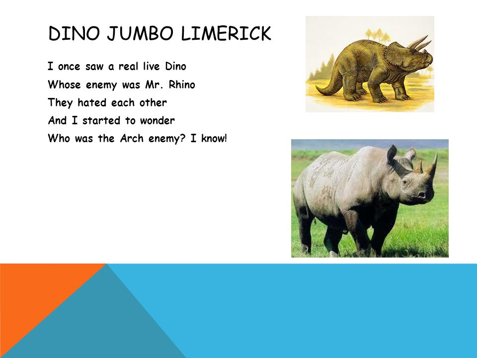 DINO JUMBO LIMERICK I once saw a real live Dino Whose enemy was Mr.