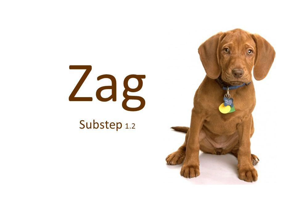 Zag Substep 1.2
