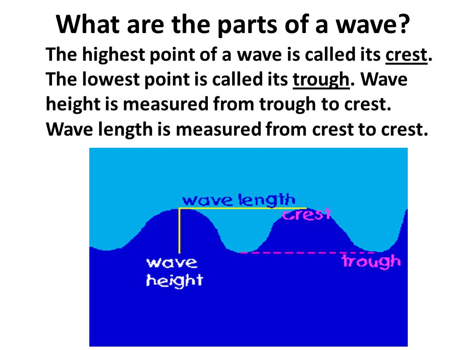 What are the parts of a wave? The highest point of a wave is called its crest. The lowest point is called its trough. Wave height is measured from tro