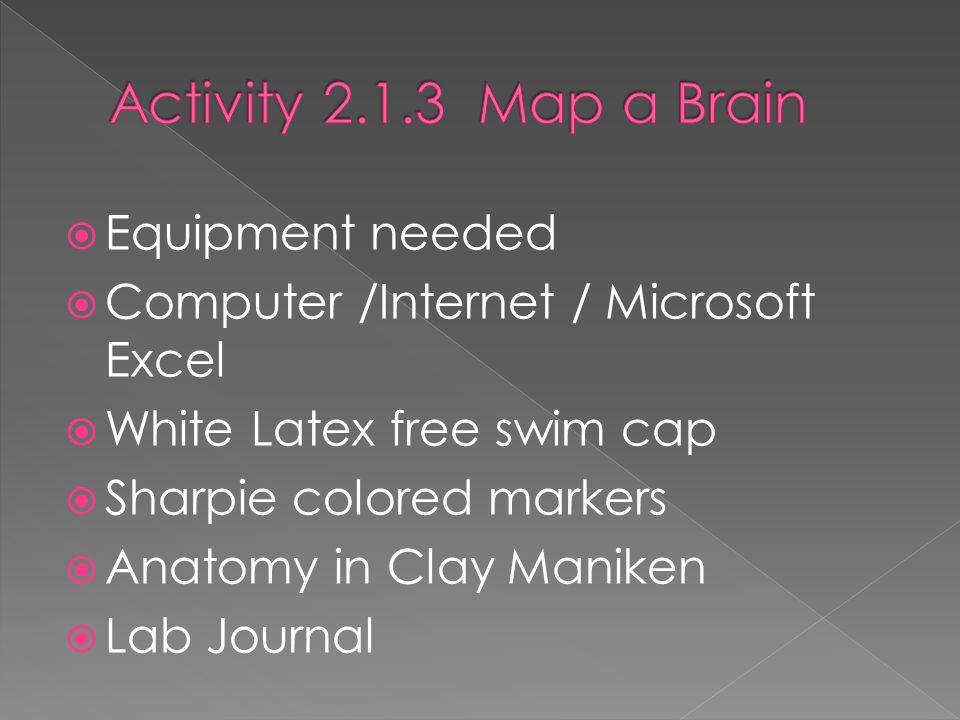 Equipment needed  Computer /Internet / Microsoft Excel  White Latex free swim cap  Sharpie colored markers  Anatomy in Clay Maniken  Lab Journal