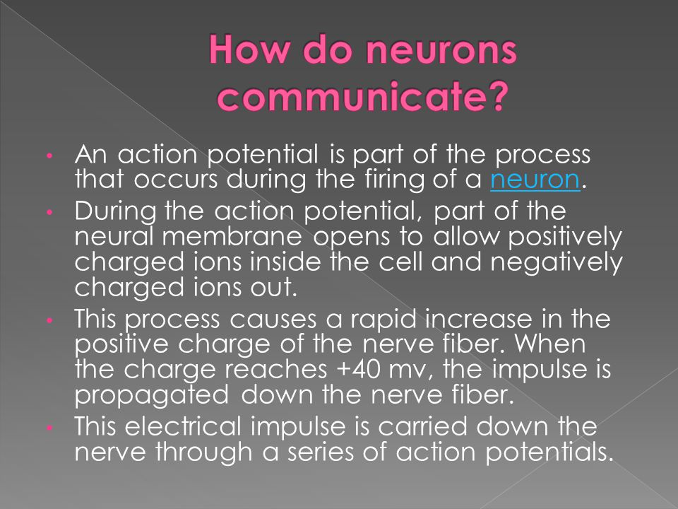 An action potential is part of the process that occurs during the firing of a neuron.neuron During the action potential, part of the neural membrane opens to allow positively charged ions inside the cell and negatively charged ions out.