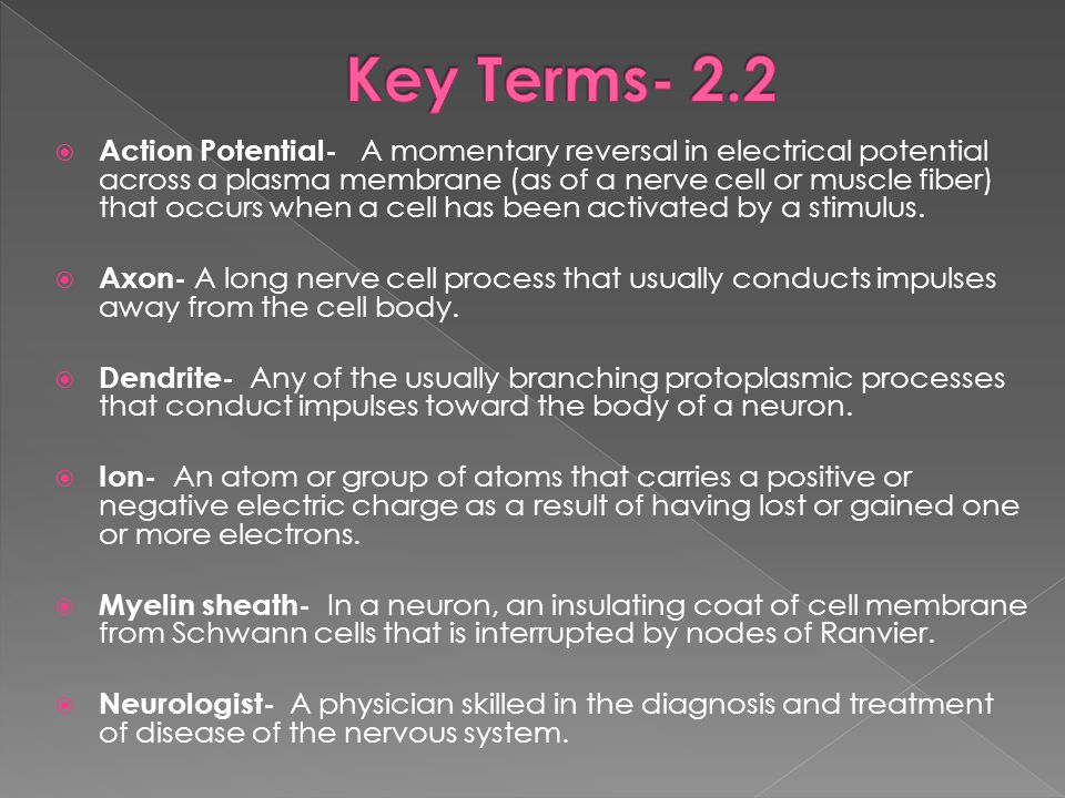  Action Potential- A momentary reversal in electrical potential across a plasma membrane (as of a nerve cell or muscle fiber) that occurs when a cell has been activated by a stimulus.