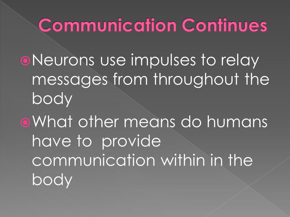  Neurons use impulses to relay messages from throughout the body  What other means do humans have to provide communication within in the body