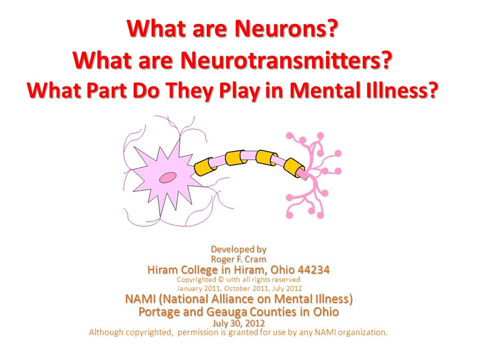 What are Neurons? What are Neurotransmitters? What Part Do They Play in Mental Illness? Developed by Roger F. Cram Hiram College in Hiram, Ohio 44234