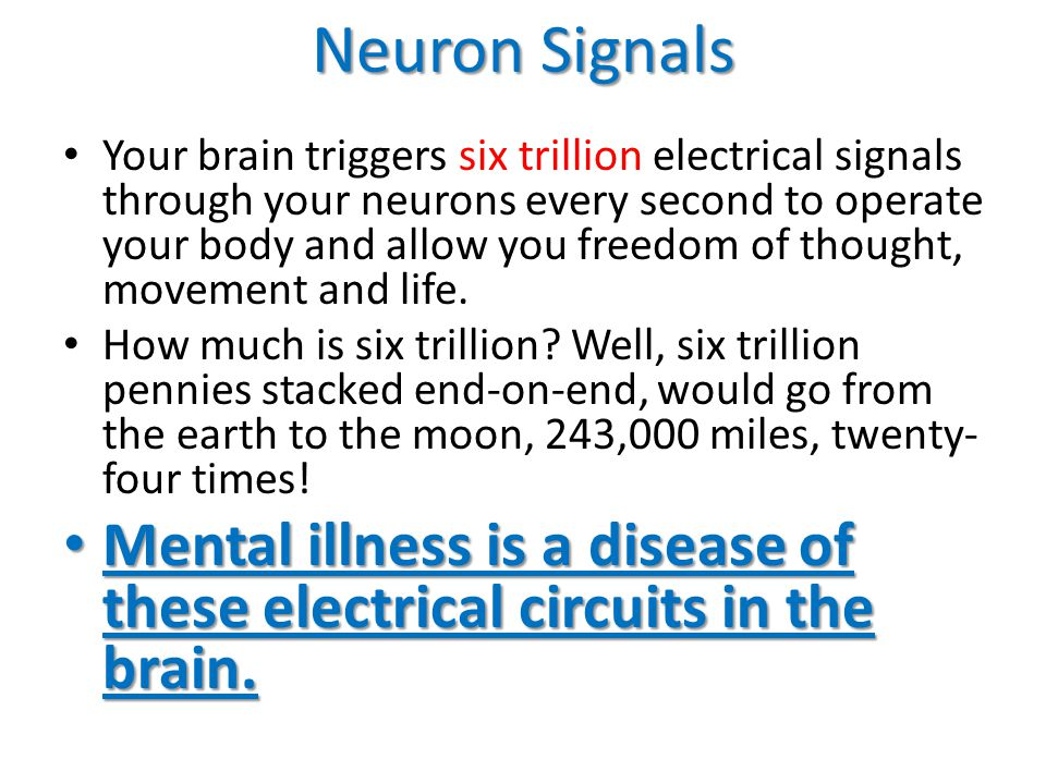 Neuron Signals Your brain triggers six trillion electrical signals through your neurons every second to operate your body and allow you freedom of thought, movement and life.