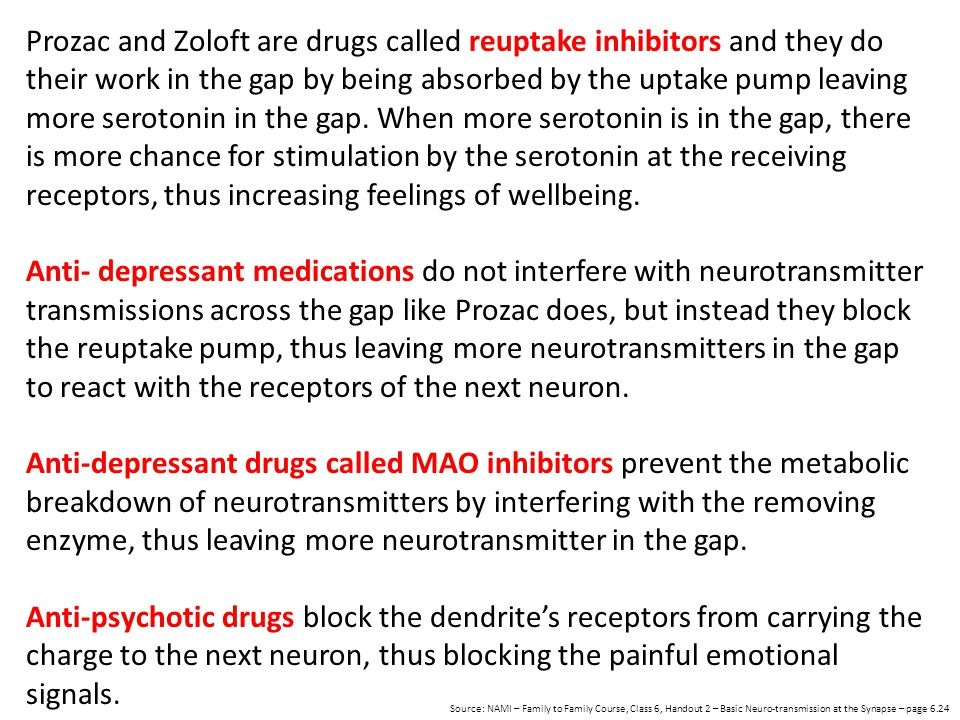 Prozac and Zoloft are drugs called reuptake inhibitors and they do their work in the gap by being absorbed by the uptake pump leaving more serotonin i