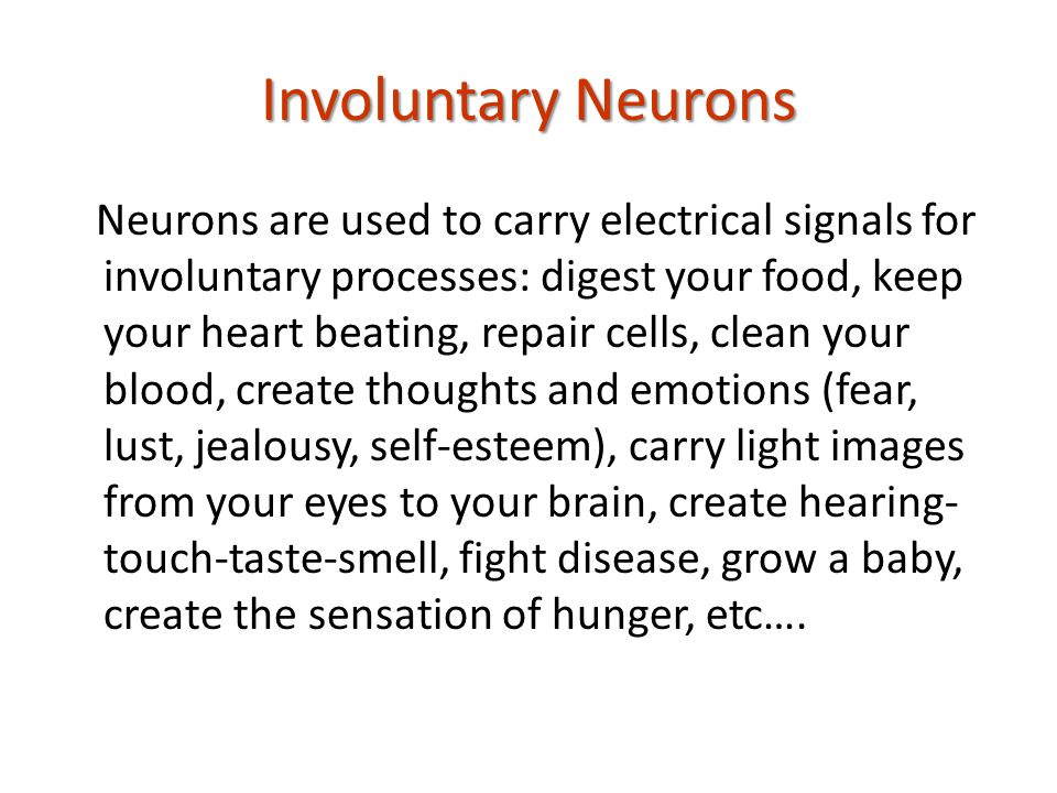 Involuntary Neurons Neurons are used to carry electrical signals for involuntary processes: digest your food, keep your heart beating, repair cells, clean your blood, create thoughts and emotions (fear, lust, jealousy, self-esteem), carry light images from your eyes to your brain, create hearing- touch-taste-smell, fight disease, grow a baby, create the sensation of hunger, etc….