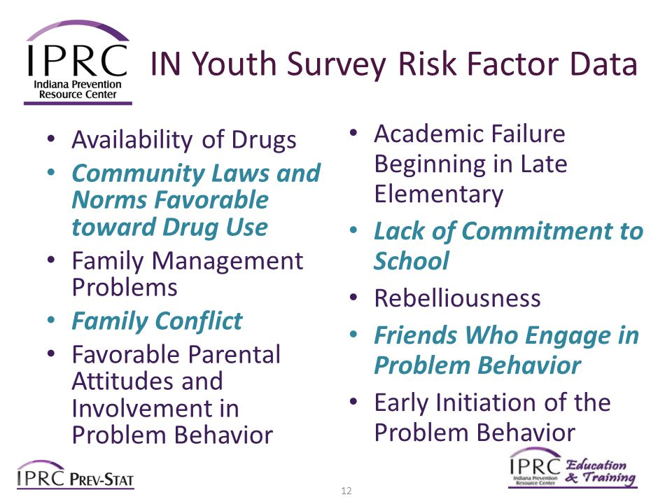 IN Youth Survey Risk Factor Data Availability of Drugs Community Laws and Norms Favorable toward Drug Use Family Management Problems Family Conflict Favorable Parental Attitudes and Involvement in Problem Behavior Academic Failure Beginning in Late Elementary Lack of Commitment to School Rebelliousness Friends Who Engage in Problem Behavior Early Initiation of the Problem Behavior 12