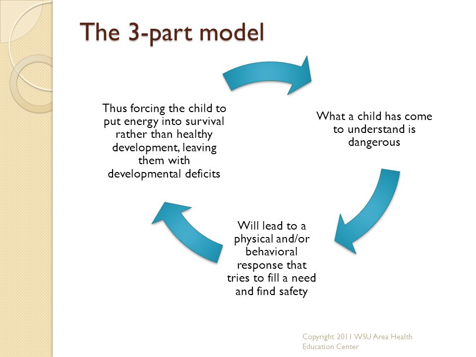 The 3-part model What a child has come to understand is dangerous Will lead to a physical and/or behavioral response that tries to fill a need and fin