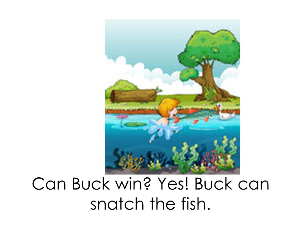 Can Buck win? Yes! Buck can snatch the fish.