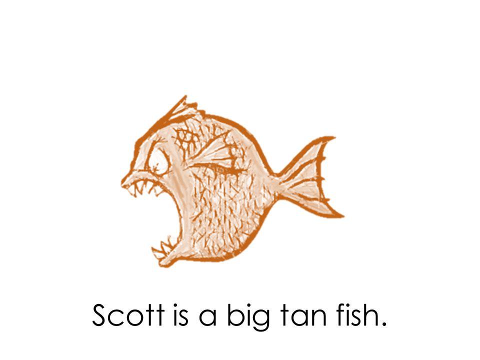 Scott is a big tan fish.