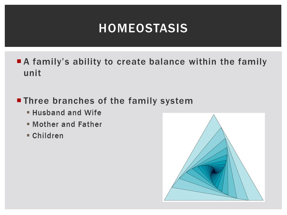  A family's ability to create balance within the family unit  Three branches of the family system  Husband and Wife  Mother and Father  Children HOMEOSTASIS