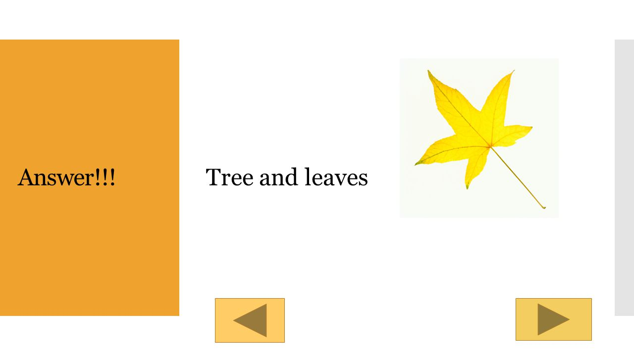 Quick check! What are the nouns in this sentence? The leaves are falling of the trees. Answer