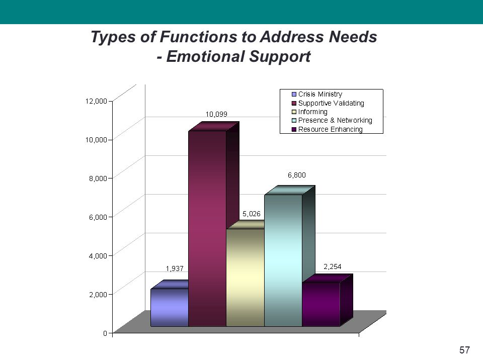 57 Types of Functions to Address Needs - Emotional Support