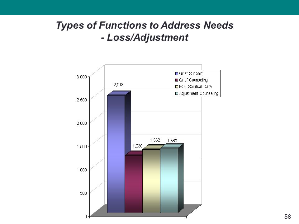 58 Types of Functions to Address Needs - Loss/Adjustment
