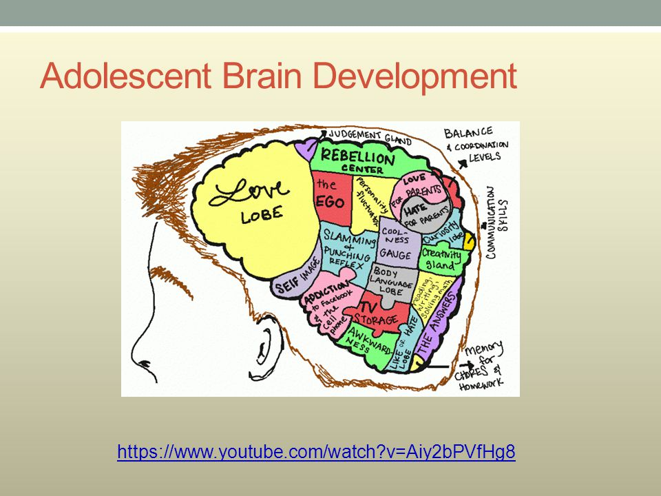 Adolescent Brain Development https://www.youtube.com/watch?v=Aiy2bPVfHg8