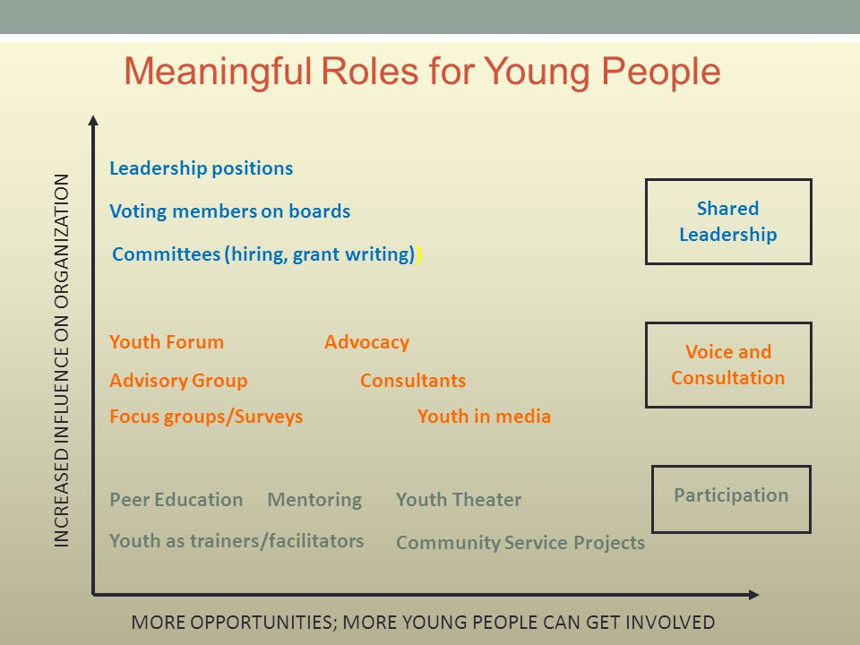 Meaningful Roles for Young People Leadership positions Voting members on boards Committees (hiring, grant writing)) Youth ForumAdvocacy Advisory Group