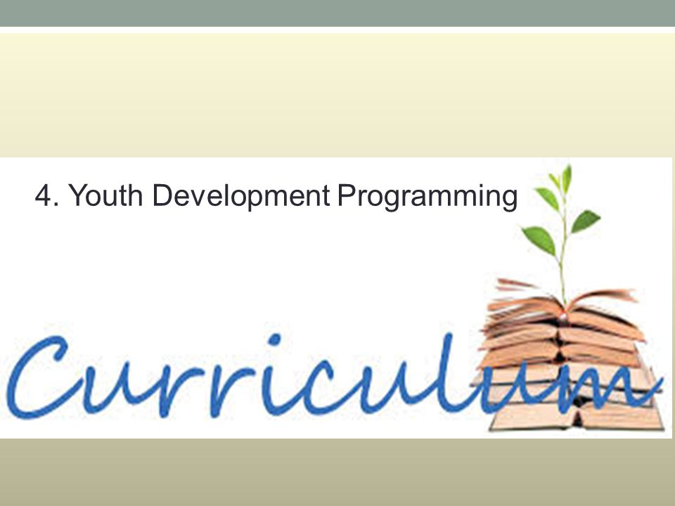 4. Youth Development Programming