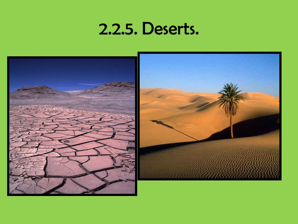 2.2.5. Deserts.