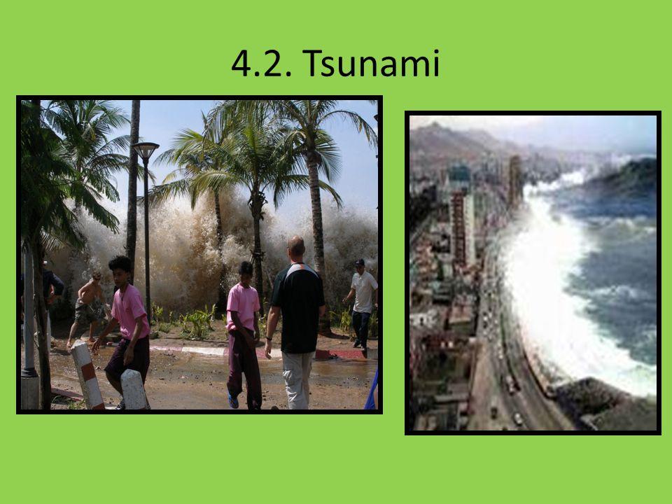 4.2. Tsunami